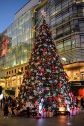 Christmas Tree at Abdali Boulevard