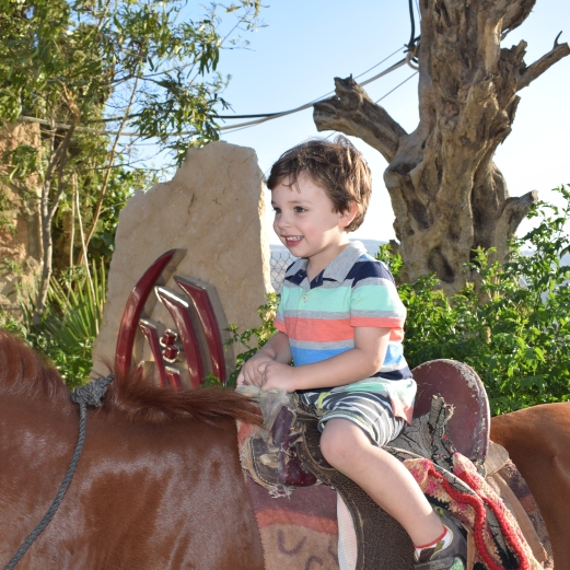 Titus on Horse