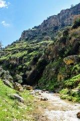 Wadi Al-Rayan