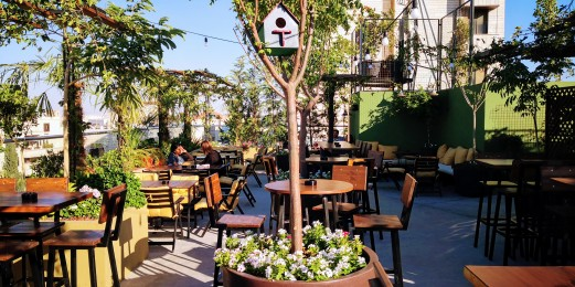 Highmesh Garden Rooftop
