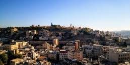 View from Wild Jordan Center over Downtown Amman and Citadel